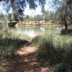 murchison-river-2